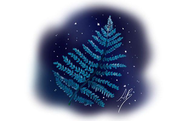 Disegno della Felce come simbolo Maori - Feel No Pain