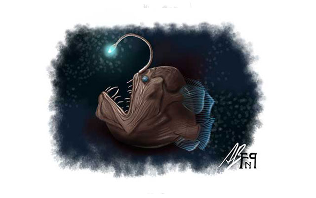 Disegno del Diavolo nero, pesce abissale - Feel No Pain