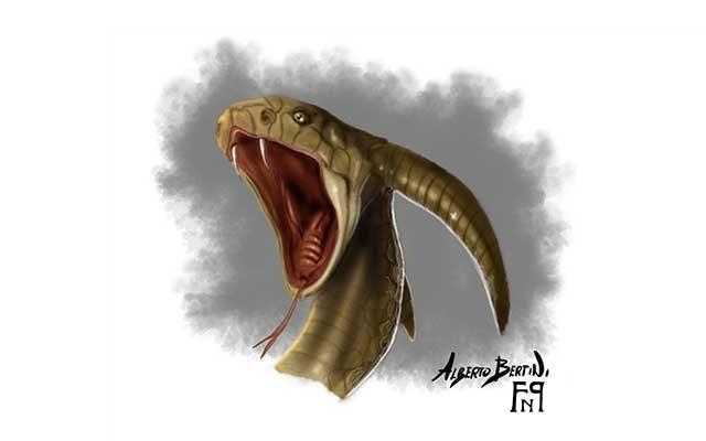 Disegno di Tiamat, serpente marino mitologico con corna - Feel No Pain